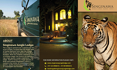 Singinawa Brochure Outside